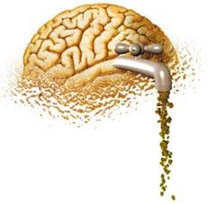 http://gtmarket.ru/files/brain-drain.jpg